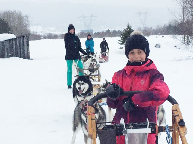Damotech employee's 30 dream dog sledding