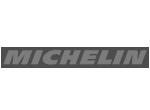 Michelin Logo - Damotech Client